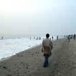 Cox's Bazar and Sundarbans are in good position of selecting New 7 Wonders